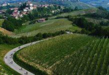 Coppa Piemonte