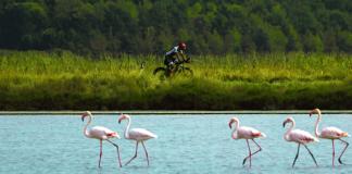 Ironman Italy Emilia-Romagna 2019