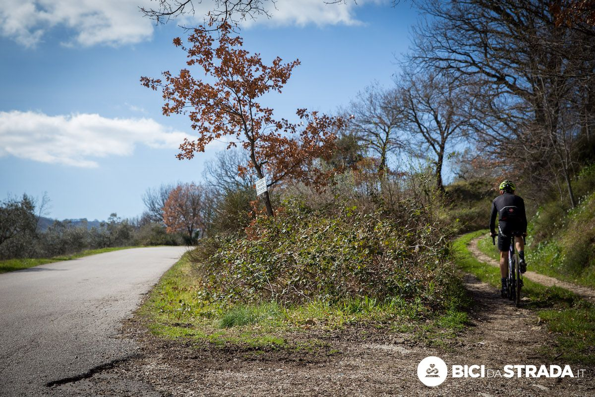 Bici gravel e ciclismo su strada