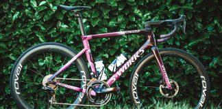 Specialized ciclamino di Sagan